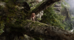 Jungle Book 2016 46
