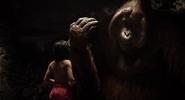 Jungle Book 2016 54