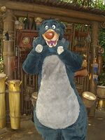 Baloo HKDL