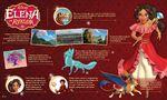 Elena-Infographic