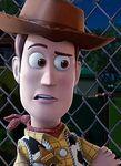 Woody Close UP