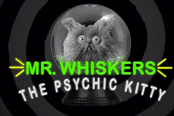 File:Whiskers psychic.jpeg