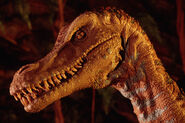 Ride Velociraptor