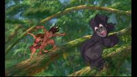 Tarzan 933