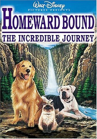 File:Homeward-bound-the-incredible-journey.jpg
