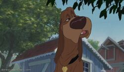 Tramp2-disneyscreencaps com-2781