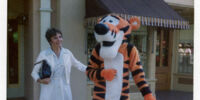 Tigger Costumes Through the Years