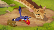 Twiga, Zazu, and a hyrax bow to Simba