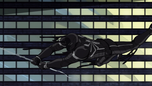 Agent Venom Sinister 6 06