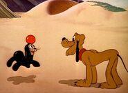 Plutos playmate 13large