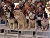 Demon-snow-dogs-32163393-632-480