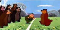 Brownstone National Park Bears