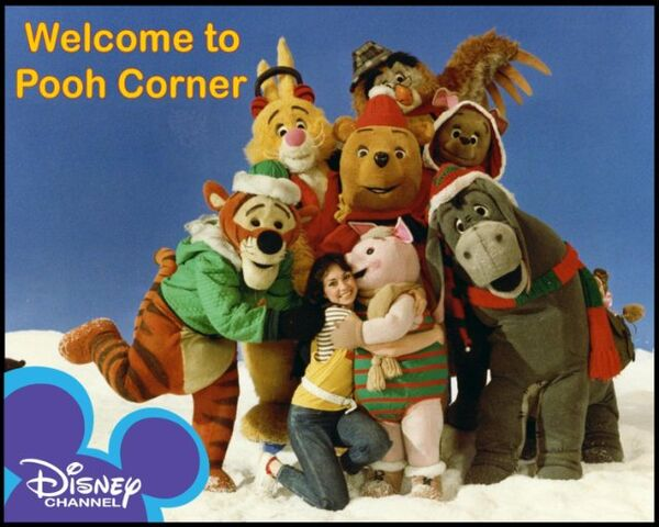 File:Welcome to Pooh Corner.jpg