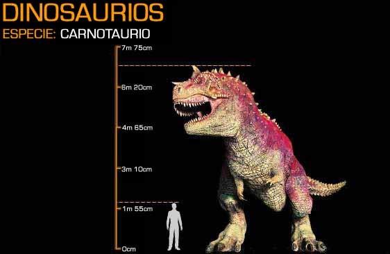 pachyrhinosaurus vs carnotaurus - photo #29