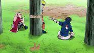 Naruto Shippuuden 257-0315