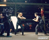 Divergentbts-shailene miles fight