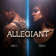 AllegiantParts12