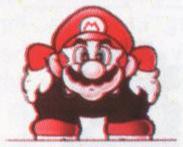 MarioCrouch