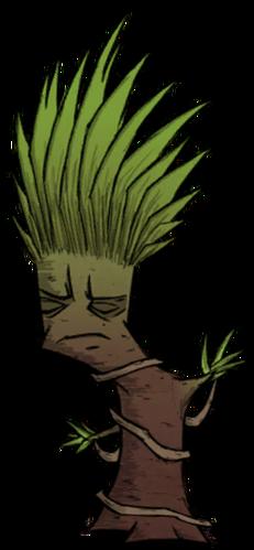 Tree/Regular Jungle Tree