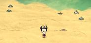 Crab Den on land