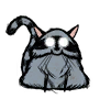 Catcoon.png