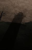 Shadow Watcher