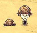 Kapelusz mózgomyśli (DSS)