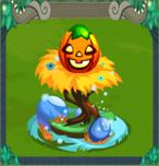 EggPumpkin
