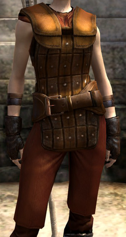 File:Mercenary's Light Strapping scnshot female.png