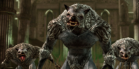 Codex entry: Werewolf