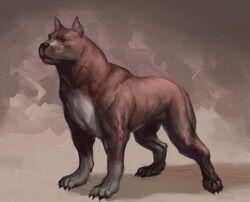 Dog concept art