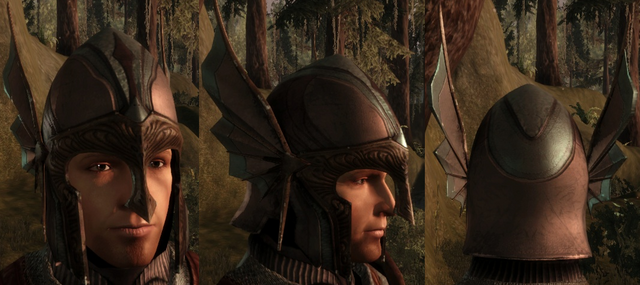 File:Grey Warden Helmet.png