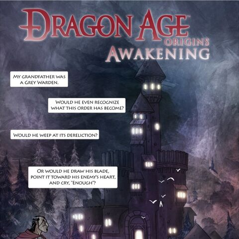 Cover of the <i>Dragon Age: Origins - Awakening</i> comic