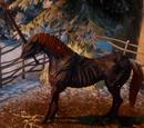 Bog Unicorn