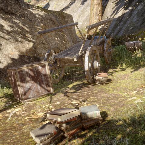 The Redcliffe merchant's caravan of books