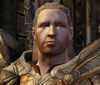 Dragon age the awesome king