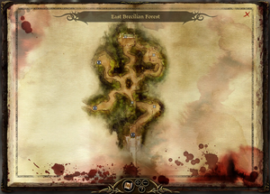 Map-East Brecilian Forest
