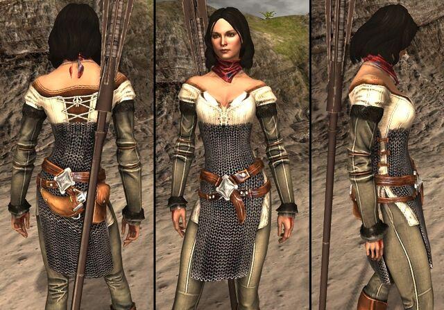 File:DA2 Hawke's Pinions - Bethany companion armor.jpg