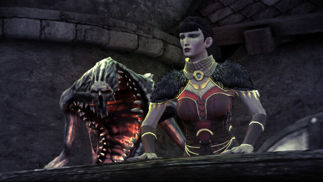 File:Baroness and Guard.jpg
