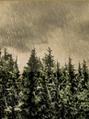 Thumbnail for version as of 07:11, November 29, 2014