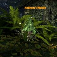 Andrastes Mantle