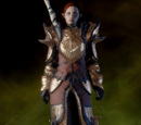Vestments of the Dragon Hunter