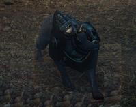 Armored Mabari