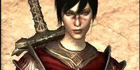 Templar Armor - Light Issue