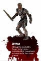 Zevran Blurb.png