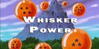 Whisker Power