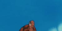 Turtle's son