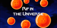 Rip in the Universe