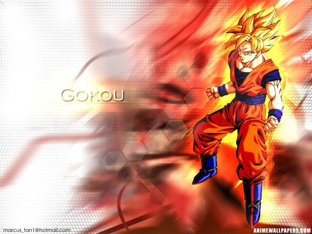 File:Goku in red Wallpaper 46s.jpg