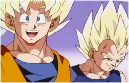 File:Goku and Vegeta2.jpg